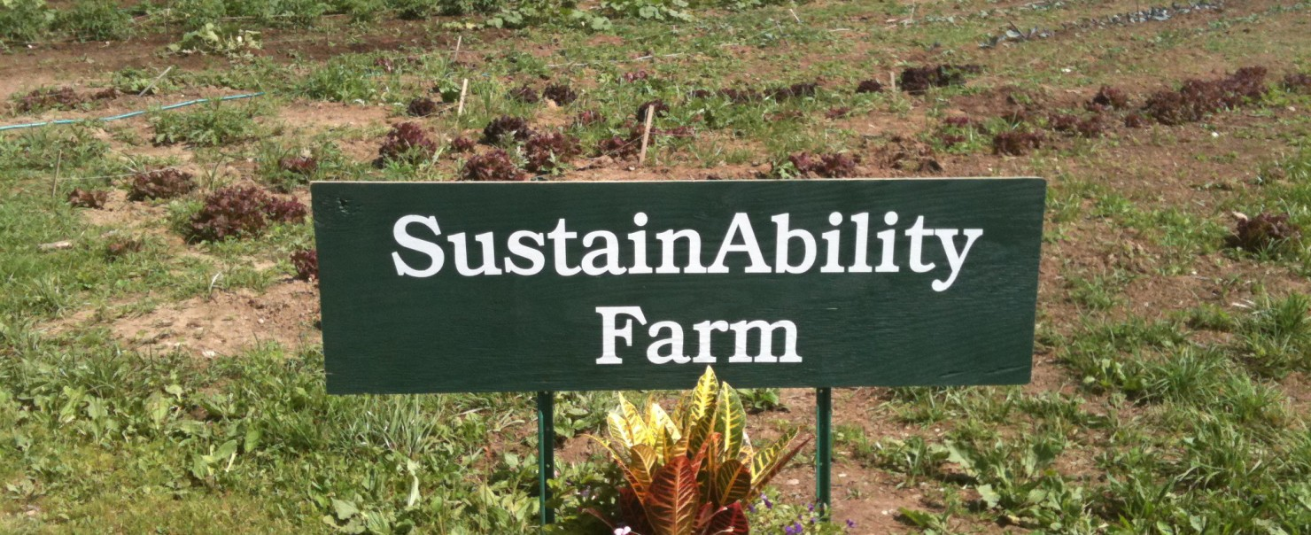 SustainAbility Farm